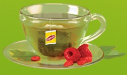 Free Sample of Lipton Green Tea with Superfruit Taste